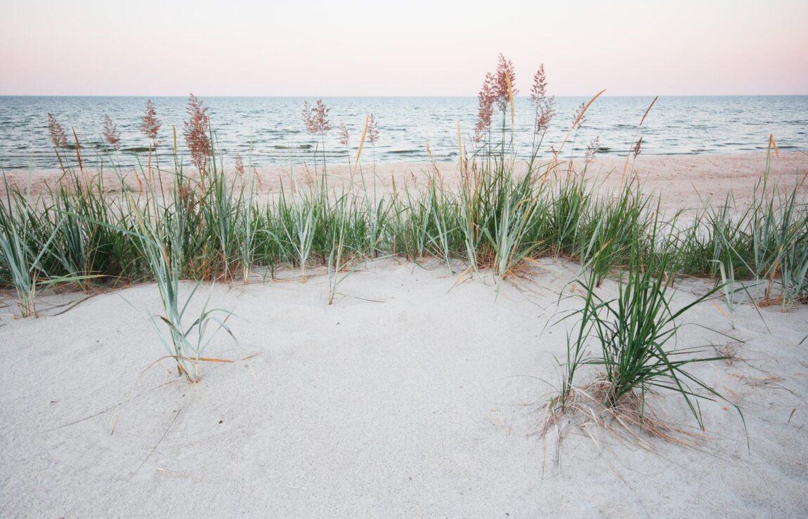 Laulasmaa rand I Eesti rannad I Laulasmaa spaa